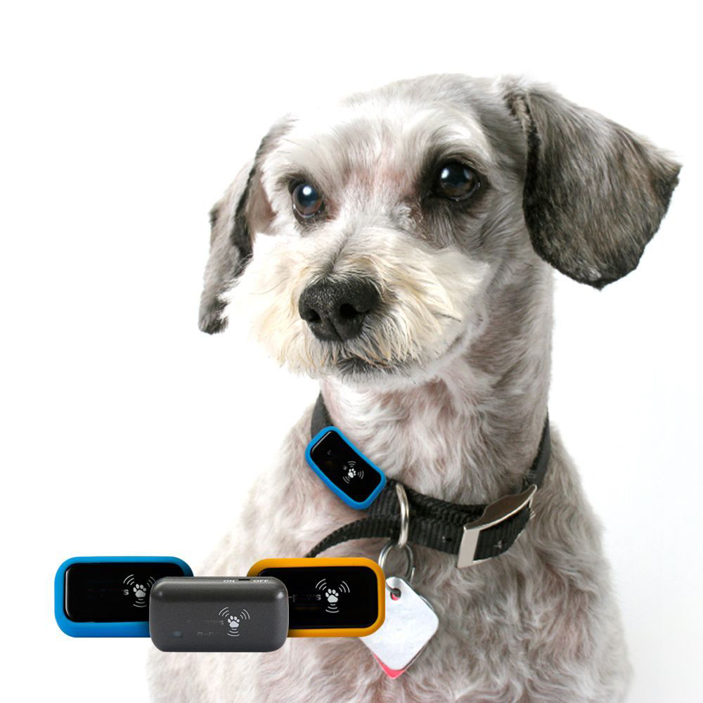 Pet GPS Data Recorder